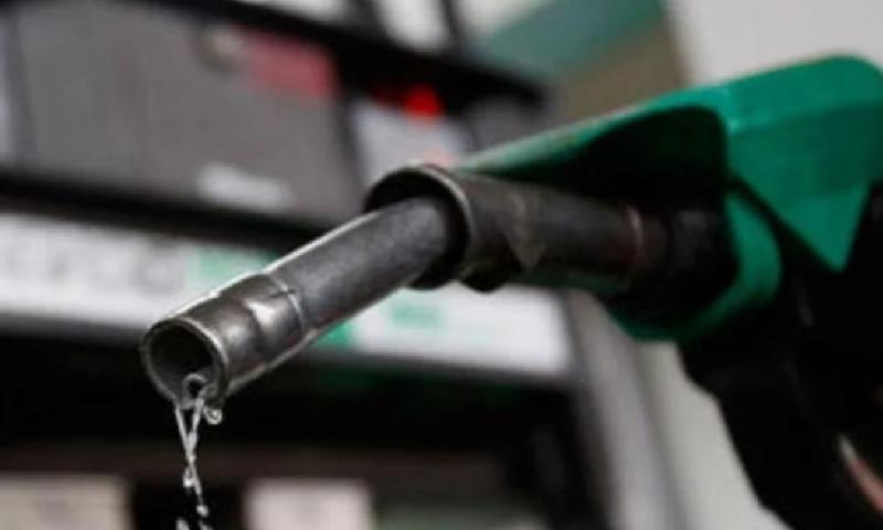 Караниколов: Първите държавни бензиностанции ще отворят още след 6 месеца