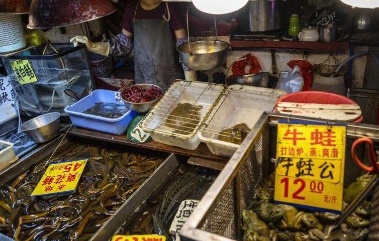 Коронавирусът не е тръгнал от животинския пазар в Ухан