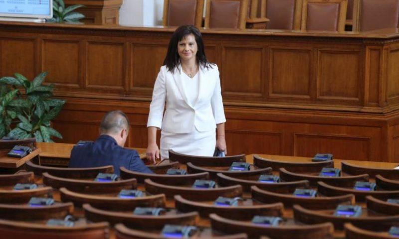 Дариткова внесе проекта за нова Конституция в парламента