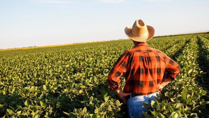 """Държавен фонд """"Земеделие"""" развързва кесията"""