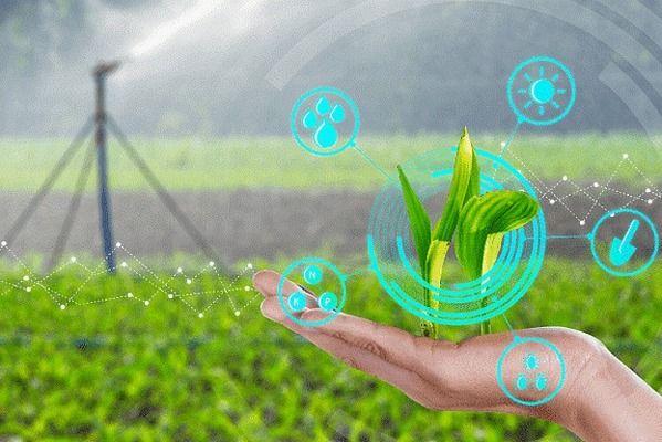 С европейски пари се подкрепят проекти за иновации в земеделието