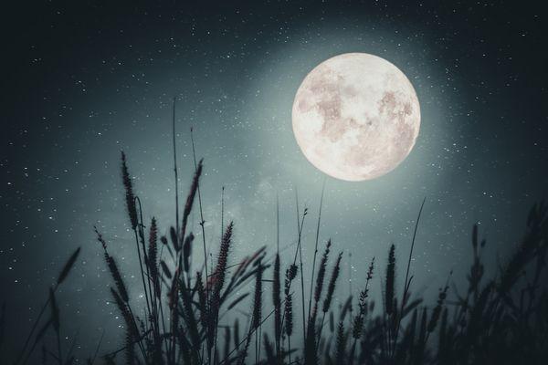 Понеделник, 9 ноември – Ден на Луната – въздържайте се от критика