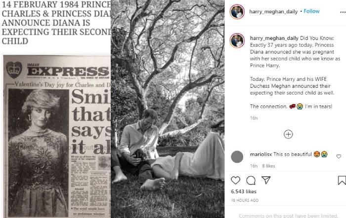 Как Меган и Хари почетоха принцеса Даяна при обявяването на бременността