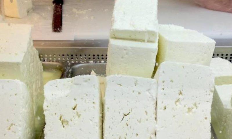 Поискахме защита от ЕК за българското кисело мляко и сирене