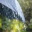 През юли ни чакат жега и дъждове, температурите стигат до 39 градуса